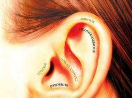 Массируем ухо — оздоравливаем весь организм